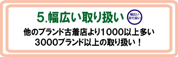 shiji5.jpg